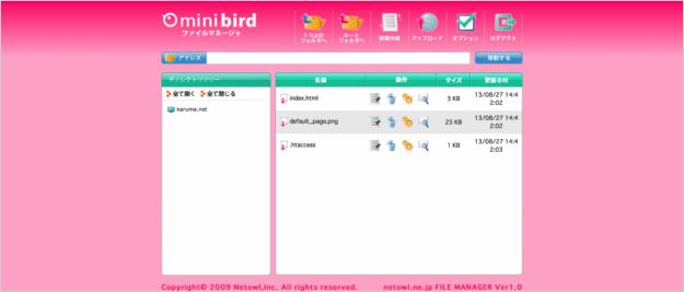 minibird-ftp-11