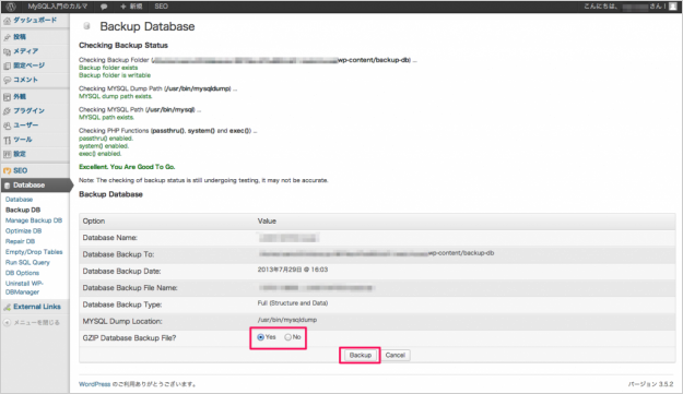plugin-wp-dbmanager-03
