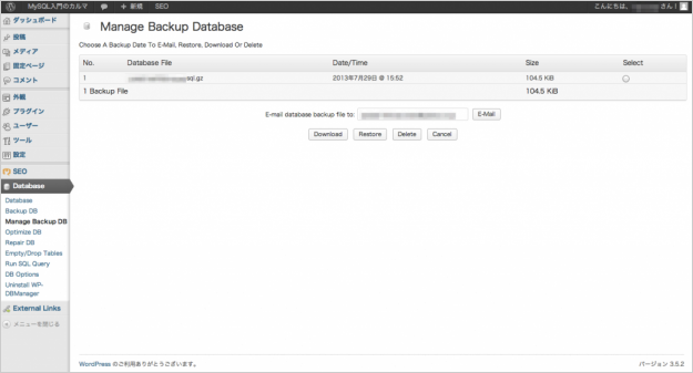 plugin-wp-dbmanager-04