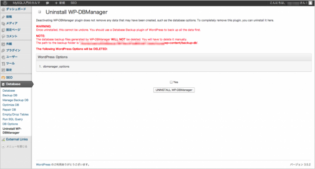 plugin-wp-dbmanager-10